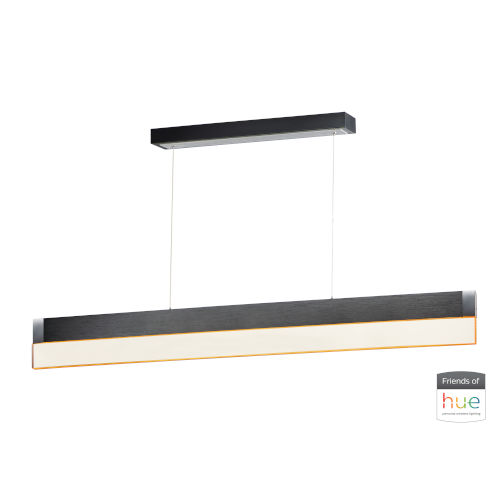Brushed Black One-Light LED Mini Pendant with Clear Acrylic Glass