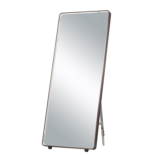 Mirror Anodized Bronze 28-Inch One-Light ADA LED Free Standing Mirror