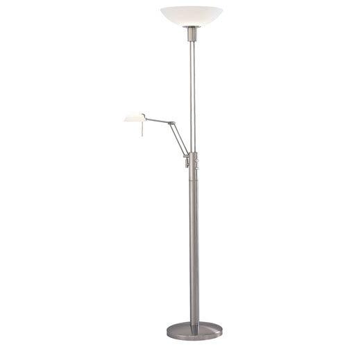 Reading Room Brushed Nickel Floor Lamp