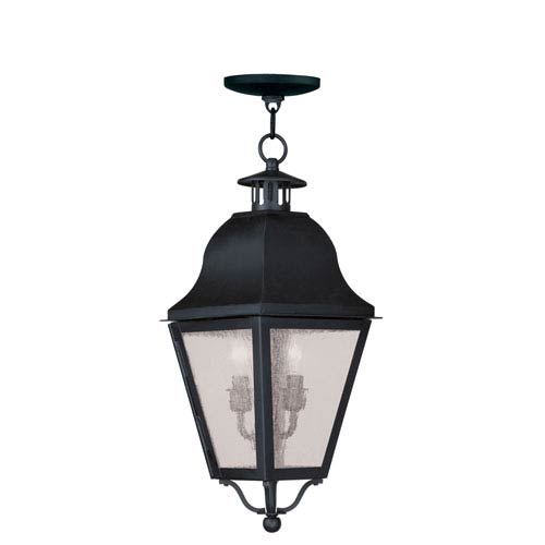 Livex Lighting Amwell Black Two-Light Outdoor Pendant