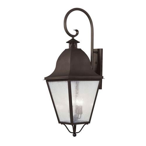 Amwell Bronze Outdoor Wall Lantern