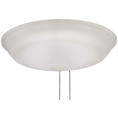 White LED Light Kit
