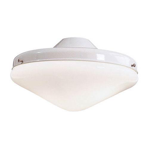 Two Light White Light Kit