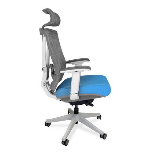 Autonomous Blue Premium Ergonomic Office Chair