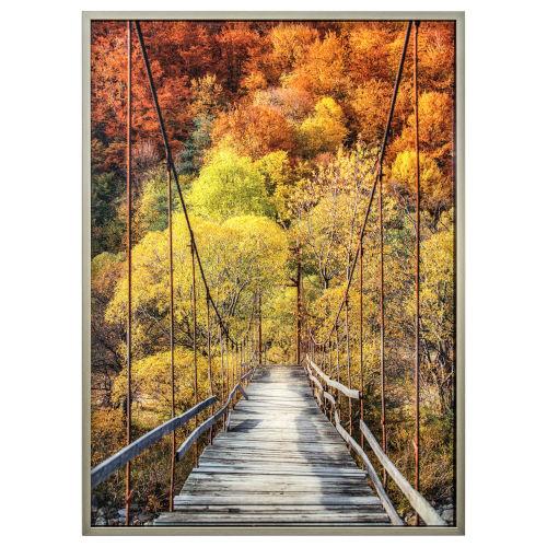 Orange Green and Brown 30-Inch Woodlands Landscape