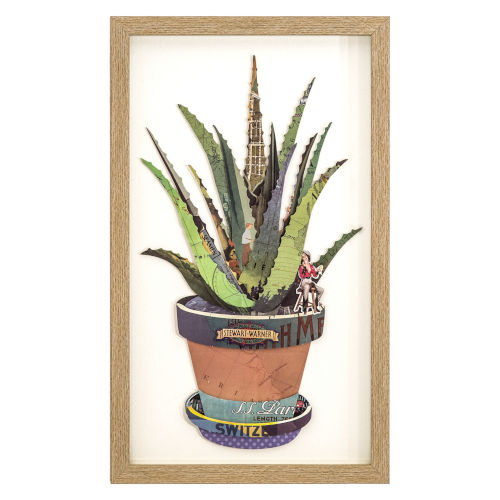 Multicolor 12-Inch Aloe Away Landscape