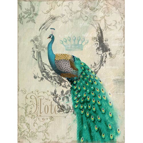 Yosemite Home Decor Peacock Poise II: 24 x 35 Prints on Canvas