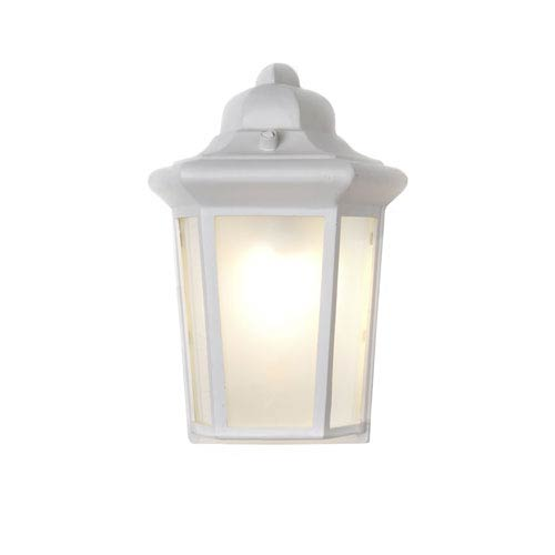 Side Door EE White One-Light Seven-Inch Fluorescent Round Outdoor Wall Sconce