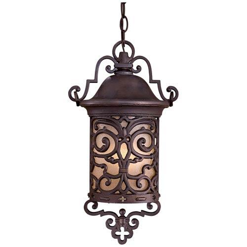 Chelsea Road Outdoor Hanging Lantern