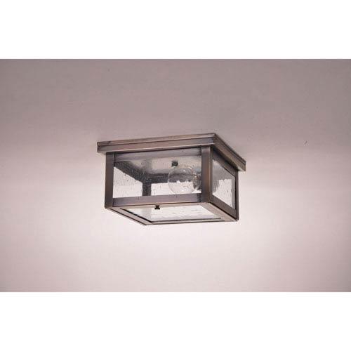 Northeast Lantern Williams Dark Antique Brass One-Light Outdoor Flush Mount with Clear Seedy Glass
