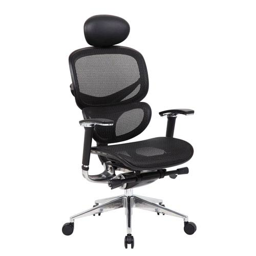 Boss Multi-Function Mesh Chair with Head Rest