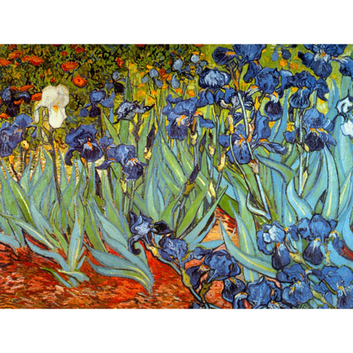Irises by Van Gogh Wall Art
