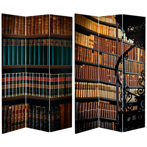 6-Foot Tall Double Sided Library Canvas Room Divider