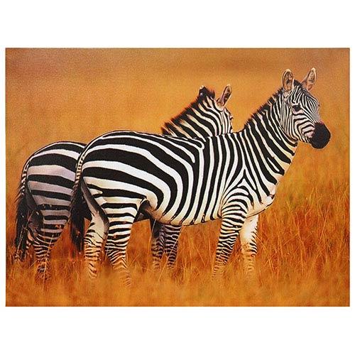 Plains Zebras: 31.5 x 23.5 Canvas Wall Art