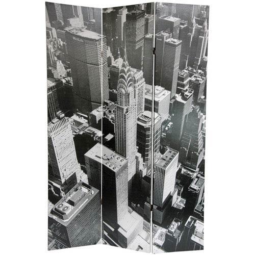 663CV-NYC_2
