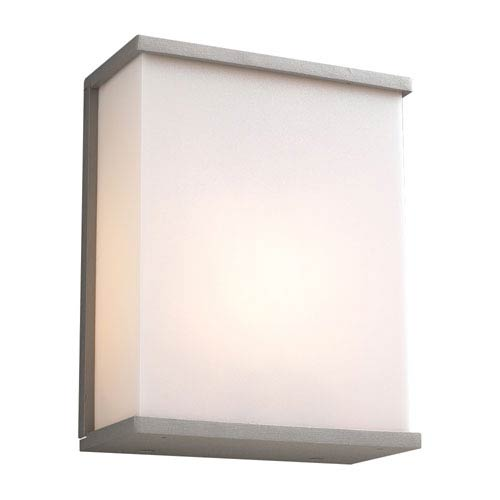 Pinero One-Light Silver Outdoor Wall Light