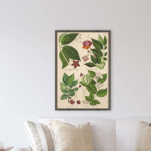 Botanica I Green Framed Wall Art
