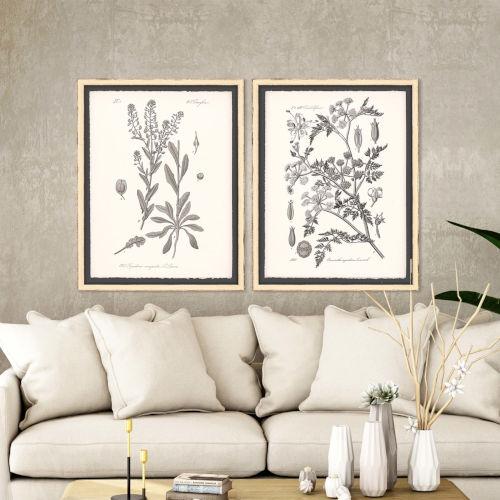 Grey Botanicals II Neutral Framed Wall Art, Set of 2