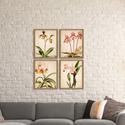 Orchids Multicolor Framed Art, Set of Four