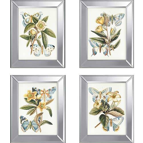 Paragon Butterflies: 20 x 16 Framed Acrylic Paint, Set of 4