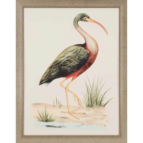 Paragon Water Bird I by Meyer: 40 x 31-Inch Framed Wall Art