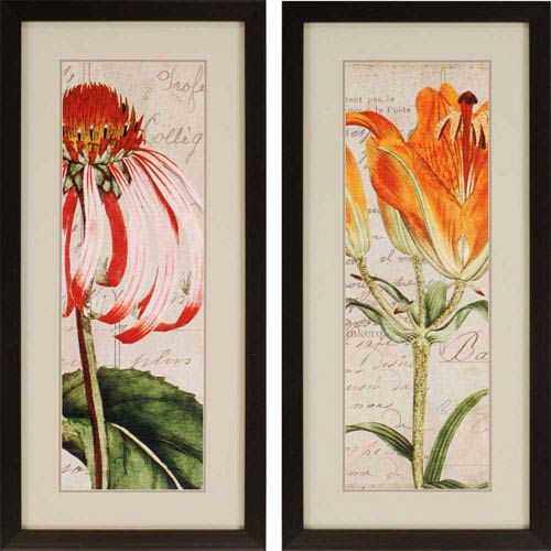 Paragon Jardin Botanique by Berg: 46 x 22-Inch Framed Wall Art, Set of Two