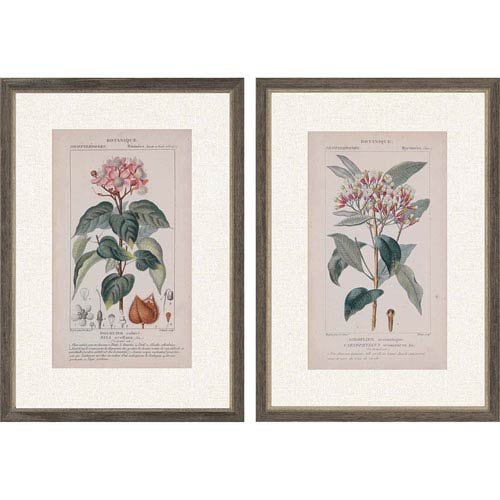 Botanique in Pink I by Turpin: 35 H x 25 W-Inch Framed Art , Set of Two