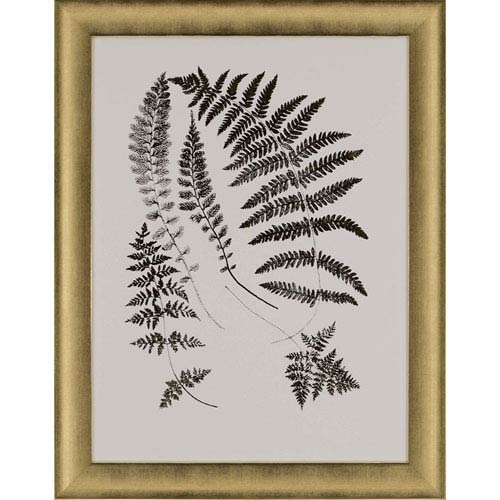 Paragon Gold Foil Ferns II by Vision Studio: 35 H x 27 W-Inch Framed Art