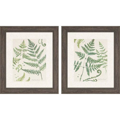 Ferns By: Roberts, 32 x 28 In. Framed Art, Set of Two