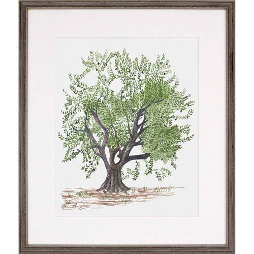 Paragon Olive Tree By: Levine, 28 X 24 In. Framed Art 4016 | Bellacor