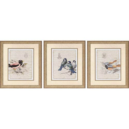 Paragon Birds on Document II by Burney: 30 x 26-Inch Framed Wall Art, Set of Three