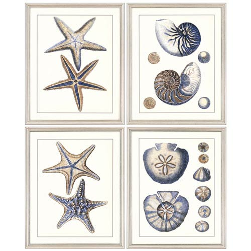 Sea Life, Set Of 4 by Unknown: 26 X 31 Standard Framed Print Reproduction
