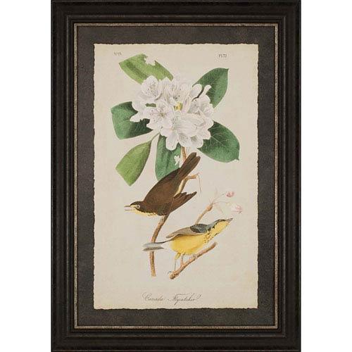 Paragon Canada Flycatcher by Audubon: 45 x 32-Inch Framed Wall Art