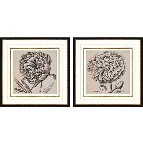 Paragon Graphic Floral I by Vision Studio: 26 x 26-Inch Framed Wall Art, Set of Two