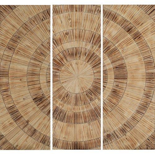 Wood Panels Nature's Circles Wall Sculpture, Set of Three
