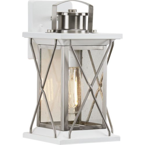 Barlowe Stainless Steel Seven-Inch One-Light Outdoor Wall Sconce with Clear Seeded Shade
