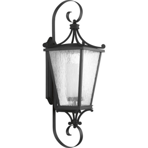 Cadence Textured Black 12-Inch One-Light Outdoor Wall Sconce with Clear Seeded Water Shade