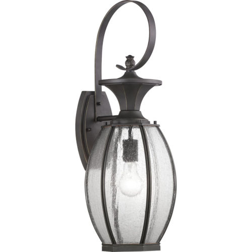 Antique Bronze 9-Inch One-Light Outdoor Wall Lantern With Transparent Seeded Glass