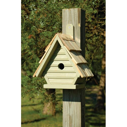 Chick Celery Birdhouse