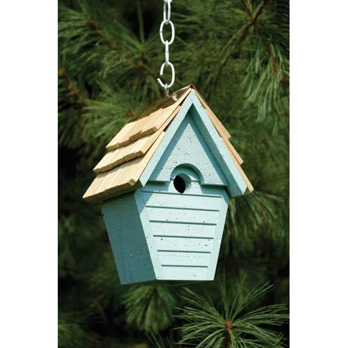 Wren-in-the-wind Blue Eggshell Birdhouse