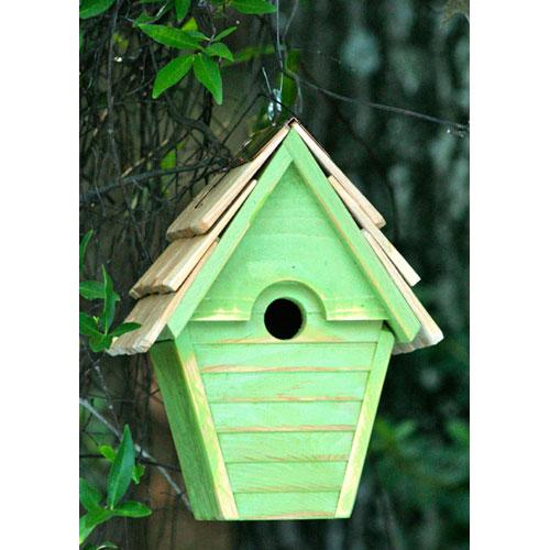 Wren-in-the-Wind Green Apple Birdhouse