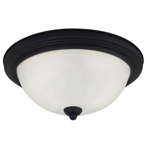 Sea Gull Lighting Blacksmith 6.25-Inch Two Light Fixture Flush Mount