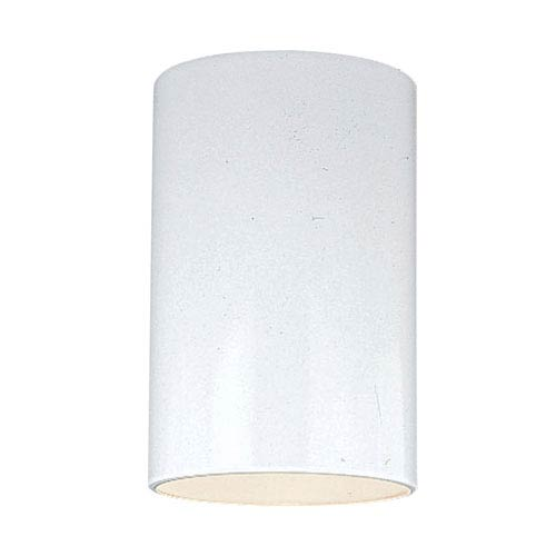 Outdoor Cylinders White Five-Inch Outdoor Ceiling Mount