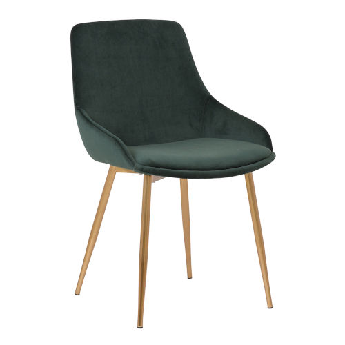Heidi Green with Gold Dining Chair