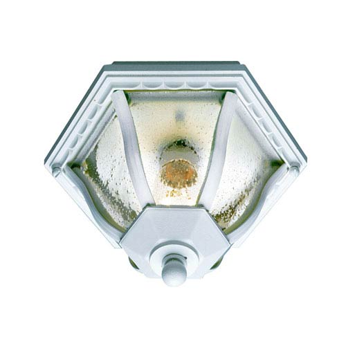 Worland White 9-Inch Outdoor Flush Mount Ceiling Light