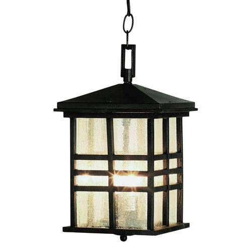 Two-Light Black Outdoor Pendant with Seeded