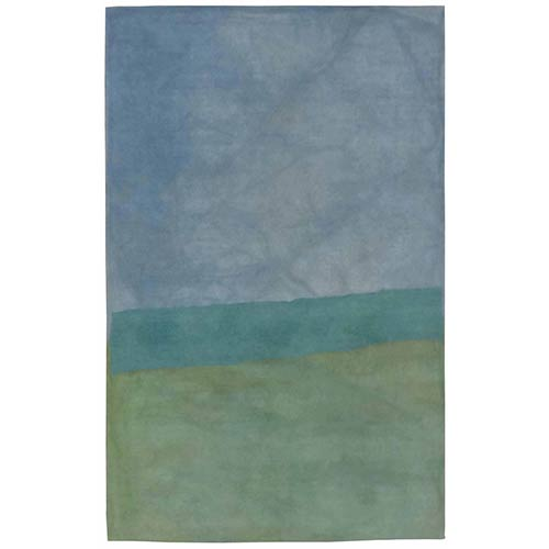 Trans Ocean Import Liora Manne Piazza Green Rectangular: 3 Ft. 6 In. In. x 5 Ft. 6 In. Rug