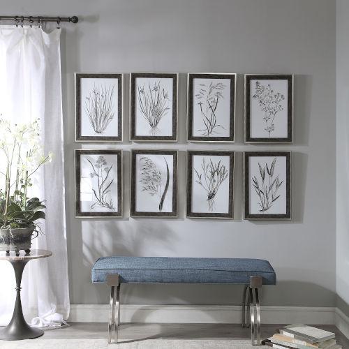 Classic Black and White Botany Framed Print, Set of 8