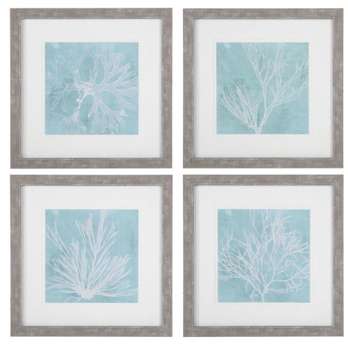 Seaweed on Aqua Aqua and White Framed Prints, Set of 4