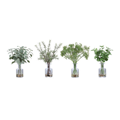 Ceci Natural Green Kitchen Herb, Set of 4